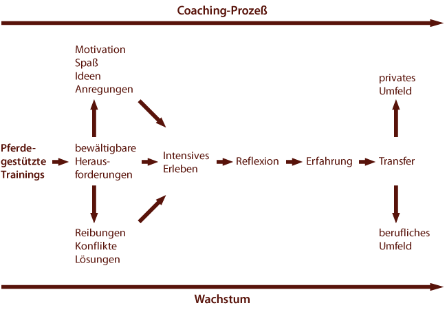 Diagramm Coaching-Prozeß